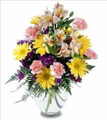 Photo of Best Wishes Flowers in Glass Vase  - C6-3067