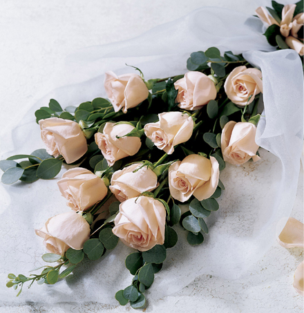 Photo of flowers: Finest Quality Roses Gift Wrapped or Boxed