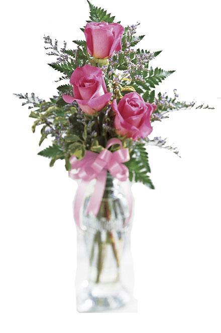 Photo of flowers: Delight Rose Vase Bouquet