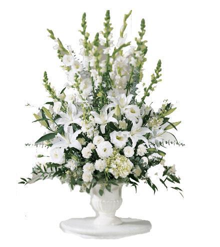 Photo of flowers: Morning Stars Arrangement