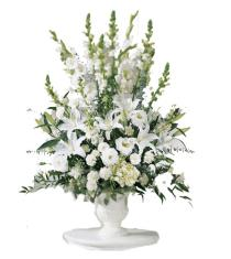 Photo of Morning Stars Arrangement - S4-3588