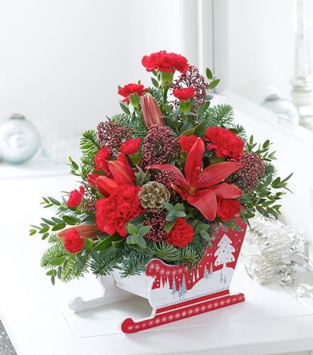 Photo of flowers: Christmas Sleigh