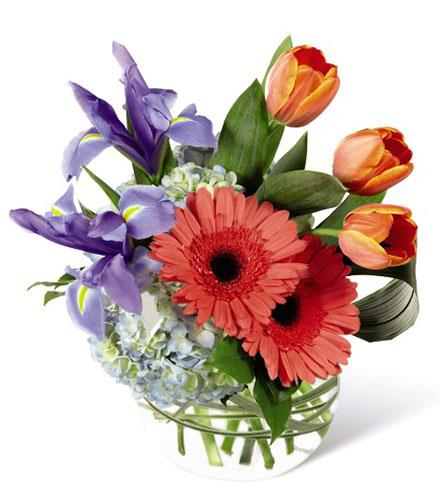 Photo of BF2683/B25-5144d (approx. 9 stems - vase Included)