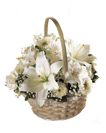 Photo of flowers: Divinity Flower Basket - Color Choice