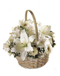 Photo of Divinity Flower Basket - Color Choice  - S38-3813