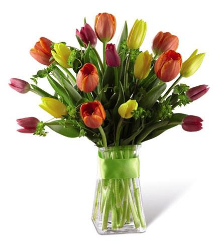 Photo of BF2721/B20-5147d (approx. 18 stems - vase included)
