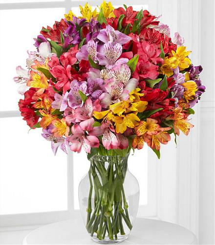 Photo of flowers: Pick Me Up Rainbow Discovery Peruvian Lilies