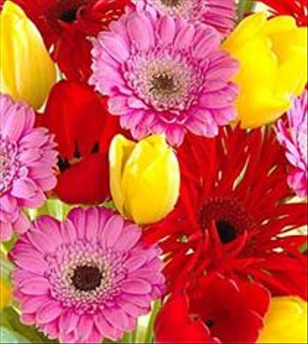Photo of flowers: Florist Designed Spring Flowers