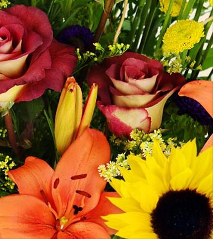 Photo of flowers: Fall Flowers and Colors Florist Choice Bouquet