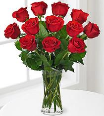 Photo of 12 Roses Arranged - F416
