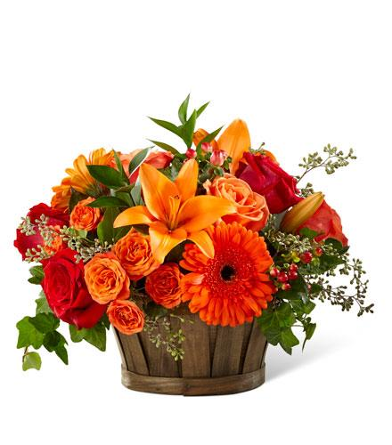 Photo of flowers: Harvest Memories Basket  17-F9
