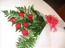 Photo of Half Dozen Long Stem Roses - IC-6RL