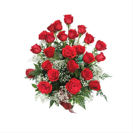 Photo of flowers: 24 Roses Gift Wrapped