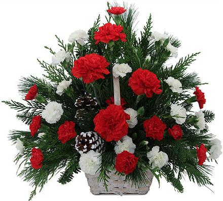 Photo of flowers: Red and White Carnation Basket