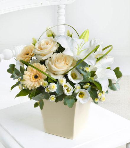 Photo of flowers: Cream Exquisite Arrangement