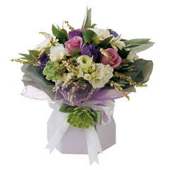 Photo of flowers: Mauve Magic