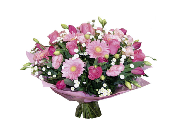 Photo of flowers: My Fair Lady Cuts Gift Wrapped