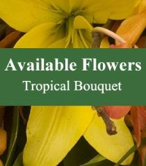 Photo of Florist Choice Tropical Bouquet - BF3733