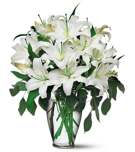 Photo of flowers: Perfect White Lilies in Vase TF24-1
