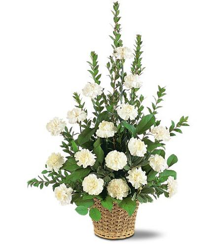 Photo of flowers: Simplicity Basket