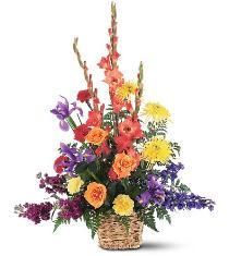 Photo of Rainbowt Flowers Basket Arrangement - TF187-6