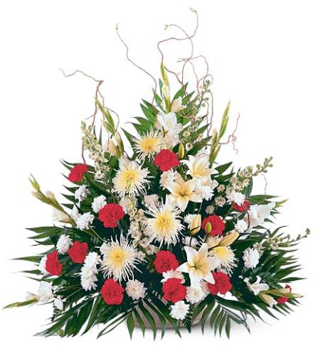 Photo of flowers: Red and White Tribute