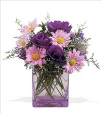Photo of Lavender Flowers Soothing Colors for Everyone - 05N300