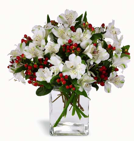 Photo of flowers: Winter Elegance Bouquet