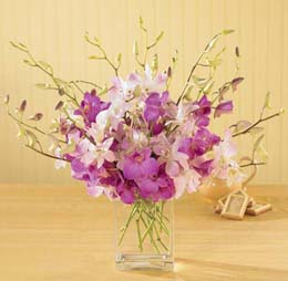 Photo of Exquisite Orchid Bouquet in Vase  - B18-4020