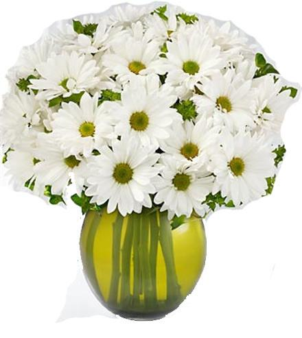 Photo of flowers: Completepiness Bouquet