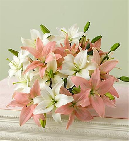Photo of flowers: Asiatic Lily Bouquet Color Choice Gift Wrapped