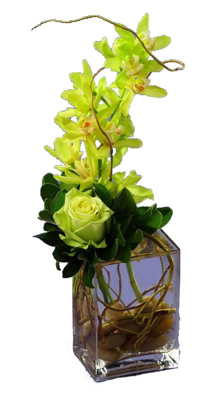 Photo of flowers: Modern Orchid Design Comfort Bouquet