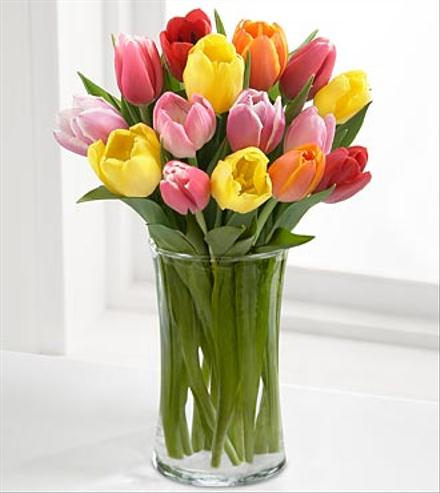 Photo of flowers: Rush of Color Mixed Tulips