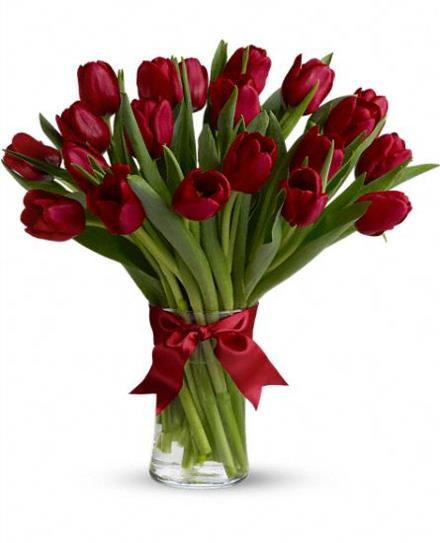 Photo of flowers: Radiantly Red Tulips Vased