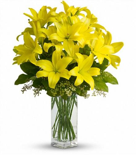 Photo of flowers: Lily Sunshine Yellow with Vase