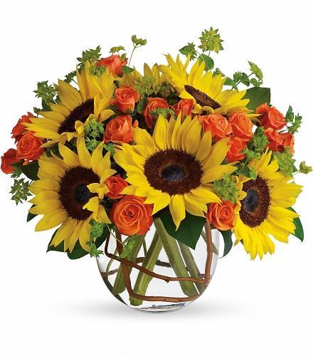Photo of flowers: Sunny Sunflowers