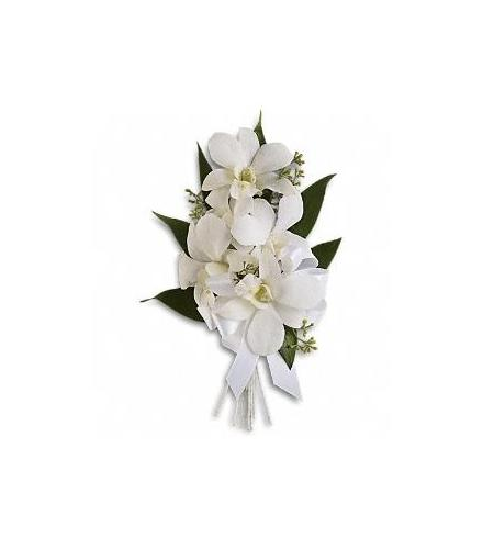 Photo of flowers: Graceful Orchids Corsage