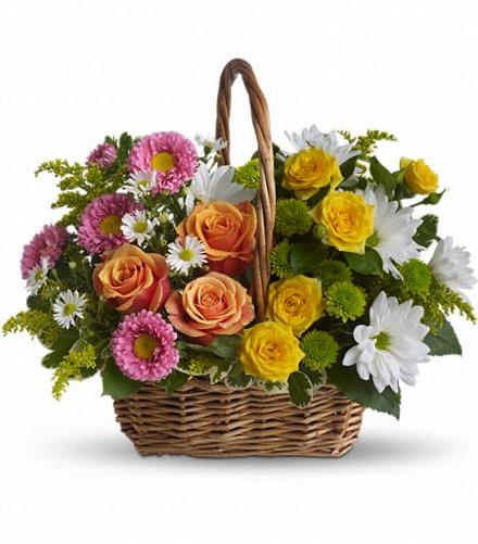 Photo of flowers: Sweet Tranquility Basket