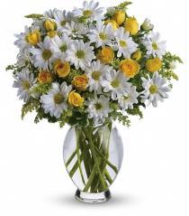 Photo of Teleflora's Amazing Daisy in Vase - T32-1