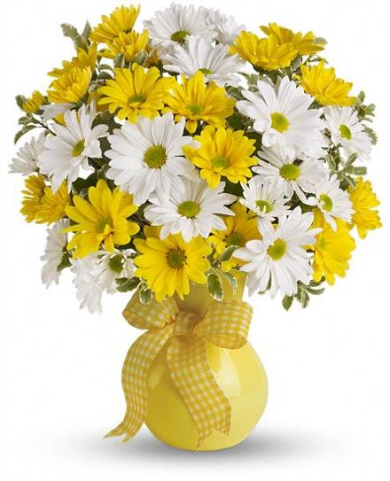 Photo of flowers: Upsy Daisy in Vase  TEV13-4