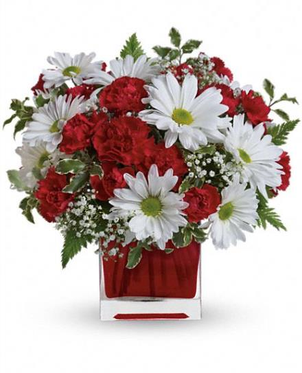 Photo of flowers: Red and White  Canada Day