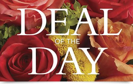Photo of flowers: Deal of the Day includes Roses