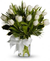 Photo of Tulips in Vase  - T12Z114