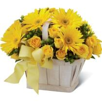 Photo of The FTD Uplifting Moments Basket - C3-4406