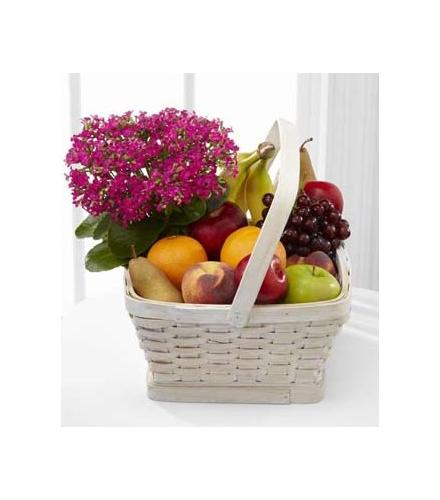 Photo of flowers: Garden's Paradise and Fruit Basket