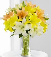 Photo of Sunny Days Ahead Asiatic Lily Bouquet - FK307