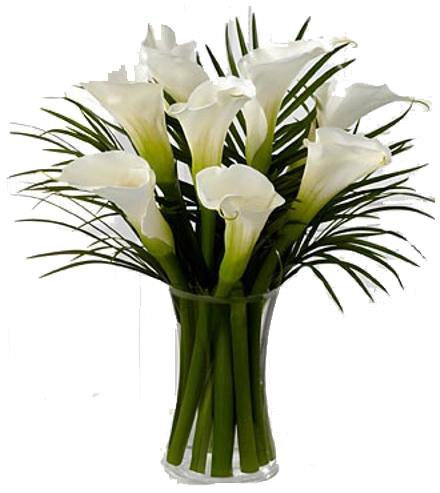 Photo of BF7497/FW14d (Approx. 8 Stems with Vase)