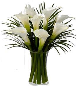 Photo of Endless Elegance Calla Lily Vase - FW14