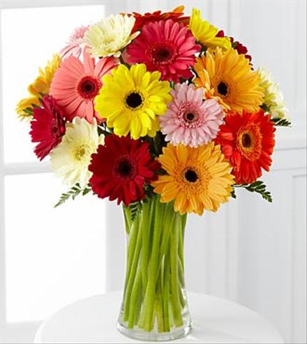 Photo of flowers: Colorful World Gerbera Daisy Bouquet