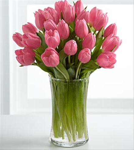 Photo of flowers: Pink Prelude Tulips Vased